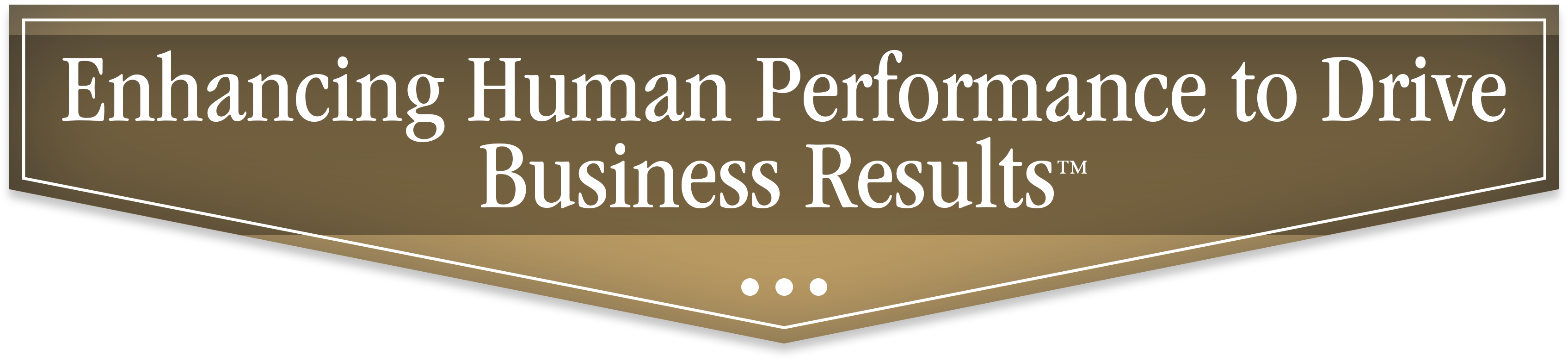 Enhancing Human Performance to Drive Business Results with Strategic Enhancement Group - SEG